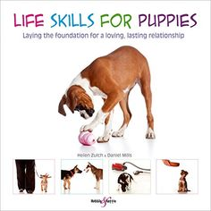 Life Skills for Puppies: Laying the foundation for a lovi... https://www.amazon.co.uk/dp/1845844467/ref=cm_sw_r_pi_dp_U_x_KhVJAbEC8D5CH