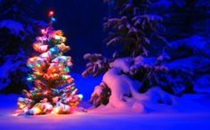 Merry Xmas 2017 / Merry Christmas 2017 HD Wallpapers For Desktop Background & Send the Warm Wishes of Merry Christmas 2017 to Your Loved Ones. Merry Christmas 2017, Snowy Christmas Tree, Christmas Images, Christmas Countdown, Christmas Greetings, Christmas Trivia, Holiday Movies, Reindeer Christmas, German Christmas