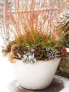 idea for my larger terra cotta pots