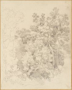 Thomas Gainsborough 'Tree Study', date not known