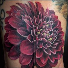 "66f7407883ea4 A.R. Pontius Flower Shop on Instagram  ""New ink.  carylcunningham you are  amaaaazing!  indieflorist  flowerfarmer  dahliatattoo  wow  tattoo  newink"""
