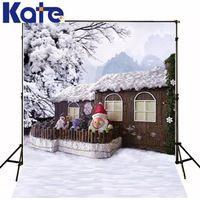 200Cm*150Cm Mini Baby Child Photographymountain Snow Tree House Background  One Hundred Days Baby Photos 1211Lk