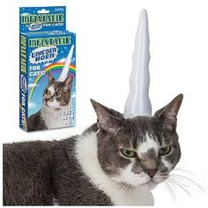 Inflatable Unicorn Horn for Cats. Everyone should have one.