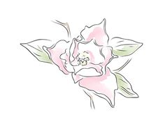 """Check out new work on my @Behance portfolio: """"Outline_vector_flowers"""" http://be.net/gallery/50220987/Outline_vector_flowers"""