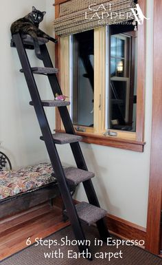 6 step cat ladder - Carpet pads wrap around each step so your cat can easily climb up and bound at the edges so they won't unravel. Key Specs - Steps are - Stairs and landings made from maple or birch furniture grade plywood, rails made from white pine. Furniture Grade Plywood, Cat Furniture, Fine Furniture, Furniture Buyers, Furniture Market, Furniture Outlet, Luxury Furniture, Furniture Design, Diy Pour Chien