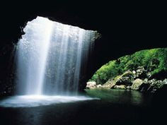 Natural Bridge, Springbrook National Park: Natural Bridge, Springbrook National Park is a most unusual geological feature created over millions of years by water tumbling through the roof of a basalt cave. Natural Bridge is home to an amazing colony of glow-worms, whose lights can be seen...