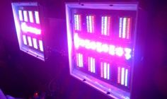 Massive Custom Low-Draw Led grow light for Orchids.  Made by EvolutionGrowLed.com