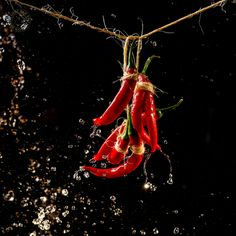 chili peppers #verrax #photography #food