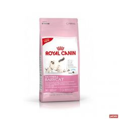royal canin baby34 yavru kedi maması
