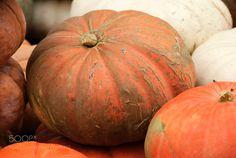 Pumpkin at Halloween