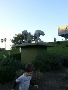 Statue of some extinct species  during the ice age period