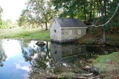 Harlan Spring Historic District in Berkeley County, West Virginia. West Virginia, East Coast, Swan, Casa De Campo, Swans