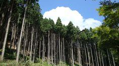 Kurama-Kibune at a glance   under the sky above the sea