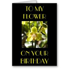 TO MY FLOWER, ON YOUR  BIRTHDAY - CARD THAT SAYS LOVE FOR SURE.