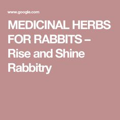 MEDICINAL HERBS FOR RABBITS – Rise and Shine Rabbitry
