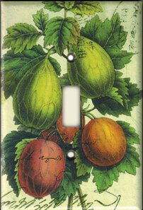 that final touch for your home decor . . . Figs decorative decoupage light switch plate covers. handmade in usa Switch Plate Covers, Light Switch Plates, Light Switch Covers, Outlet Store, Figs, Outlets, Decoupage, Museum, Touch