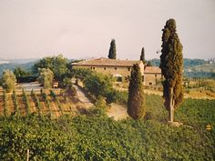 So excited to spend a week in Italy's wine country!!!