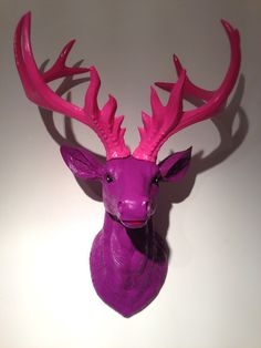 Stag head 'Lilly', £45.00