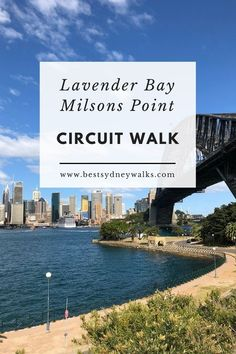 The Lavender Bay and Milsons Point circuit walk is a short but scenic walking trail, offering stunning views of Sydney Harbour and the Harbour Bridge. Harbor Bridge, Sydney Harbour Bridge, Sydney Australia, Australia Travel, Western Australia, Sydney Tourist Attractions, Coogee Beach, Visit Sydney, Picnic Spot