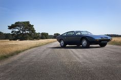 Justin van Vliet's portrait of 1977 Maserati Khamsin