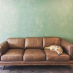 Dark Gray Right Sectional Sofa Upholstered