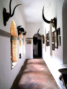 love the terra cotta floor and white washed walls ... very Africa feeling