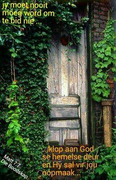In the friends' backyard. Secret Garden Door, Garden Doors, Garden Gates, Garden Art, Garden Design, Garden Ideas, Outdoor Plants, Outdoor Fun, Outdoor Gardens