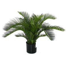 Flora Novara Artificial Sago Cycas Palm Plant