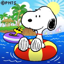Snoopy Snoopy Images, Snoopy Pictures, Peanuts Cartoon, Peanuts Snoopy, Kids Cartoon Characters, Happy Birthday Meme, Humor Birthday, Sestri Levante, Snoopy Comics