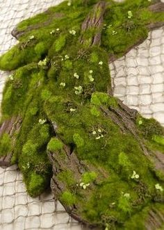 Bring The Stunning Beauty Of A Woodland Forest To Your Home With The Artificial  Moss