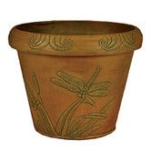 Found it at Wayfair - <strong>Arcadia Garden Products</strong> Dragonfly Pot