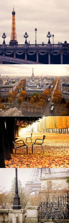 L'Automne à Paris. Le sigh.... I lived in Paris for part of one college year, love seeing its eternal nature!