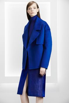 http://www.fashionsnap.com/collection/jason-wu/2015-16aw-pre/gallery/index11.php