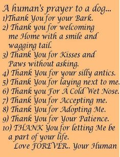 I actually just read this to my 6 year old Tibetan Terrier Lacey we got from Nikkie at Ri Lee Kennels after losing 2 dogs in 3 months...see more of her Tibetans on her website....