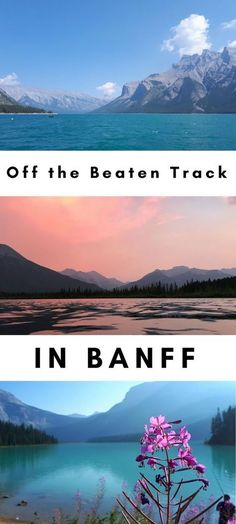 Off the Beaten Track in Banff **** Banff | Banff National Park | Canada | Alberta | Lake Louise | Hiking | Mountains | Canadian Road Trip | Banff Ideas | What to do in Banff | Visit Banff