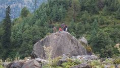 Camping in Solang Valley >>>#Camping #Paragliding #Rappelling #RockClimbing #Skiing