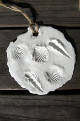 Preschool Plants, Animals & the Earth Activities: Fossils for Kids