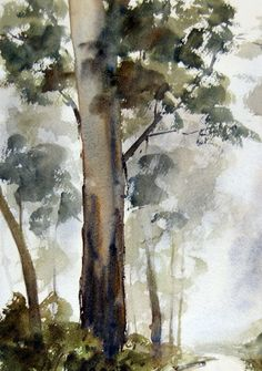 Painting gum tree in foreground.Eucalyptus in watercolor