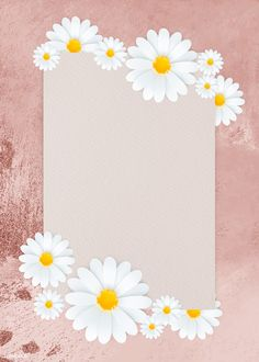 Website Design Tips Anyone Can Understand And Use Framed Wallpaper, Flower Background Wallpaper, Light Blue Background, Cute Wallpaper Backgrounds, Pretty Wallpapers, Flower Backgrounds, Background Patterns, Pink Daisy Wallpaper, Daisy Background