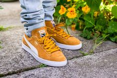 See how the Puma Suede Classic Inca Gold looks on feet in this video review before you cop! Find out where to buy these Puma Suedes online! Puma Sneakers, Converse Sneaker, Ankle Sneakers, Sneakers Mode, Classic Sneakers, Sneakers Fashion, Fashion Shoes, Sneaker Outfits, Puma Suede Outfit