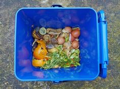 Food Waste Facts    There are 870 million people in the world today who are undernourished, according to the World Food Programme. That means one out of every eight people is not getting enough food—more than three times as many people as live in the United States. It's rather uncomfortable, in light of that daunting figure, to face the facts found in a new report released by the Institution of Mechanical Engineers (IME): Globally, we're wasting four billion tons of food every year. In devel...