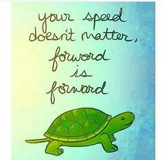 Turtle Quotes This Project Is At A Turtle Paceslowslowput My Head In .