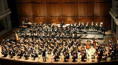 Anima Mundi. Rassegna Internazionale di Musica Sacra | Pisa, 14 / 27 settembre 2013