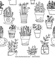 Pattern flowers in pots painted black line on a white background. Vector drawing lines