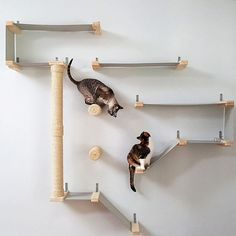 Some of us are cat people, and some of us are *really* cat people. What can we say! #DifferenceMakesUs. Cat hammock activity center from Etsy seller @catastrophicreations. #catsdiyfurniture