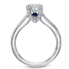 Vera Wang Ring...has a sapphire in every ring meaning eternity forever love