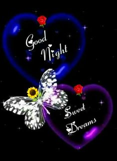Good Night Images For Whatsapp Good Night Flowers, Beautiful Good Night Images, Cute Good Night, Good Night Sweet Dreams, Good Night Quotes, Good Morning Good Night, Sweet Night, Good Night Greetings, Good Night Messages