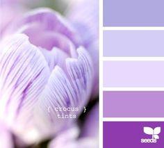 New Exterior Paint Colors For House Purple Design Seeds 23 Ideas Scheme Color, Purple Color Schemes, Colour Pallete, Color Combos, Color Palettes, Purple Paint Colors, Purple Palette, Purple Hues, Periwinkle