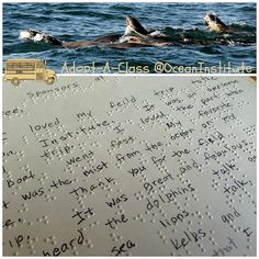 "Thank you to all of our Adopt-A-Class sponsors that enable us to use the ocean as our classroom, to inspire children to learn. The letter below is written in braille from a blind student describing her experience out on the R/V Sea Explorer. Her favorite part was ""the mist of the ocean on her face"" and ""the sound of the sea lions talk."""