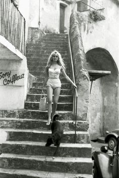 Brigitte Bardot: pic #368777 NAME: Brigitte Anne-Marie Bardot OCCUPATION: Animal Rights Activist, Film Actress BIRTH DATE: September 28, 1934 (Age: 78) PLACE OF BIRTH: Paris, France ORIGINALLY: Camille Javal ZODIAC SIGN: Libra less about Brigitte BEST KNOWN FOR  Brigitte Bardot is known for the 'sex kitten' image she projected in her early films, which set box-office records and made her an international star.